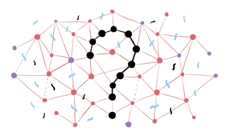 Algorithms Specialist